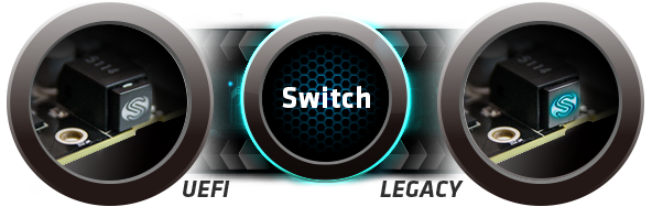 Switch Dual Bios